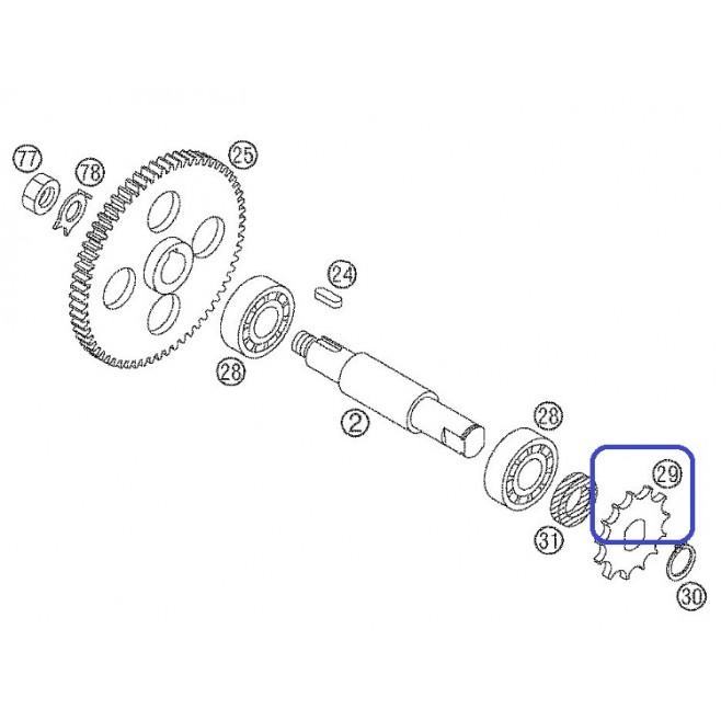 Piñón KTM SX 85 03-17 13D
