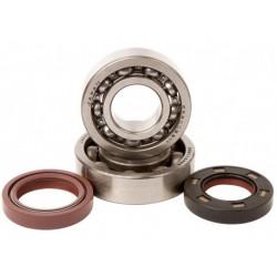 Kit Rep. Rodamientos y retenes Cigüeñal KTM Exc/Sx 125-200 11-14