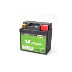 Bateria Litio Skyrich LFP01 (Impermeable + indicador de carga)
