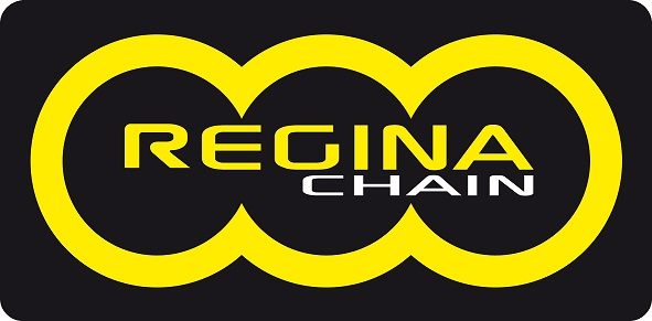 7050cbf83829 Cadena Regina Retenes Reforzada ZRE Serie Oro 520 118 pasos